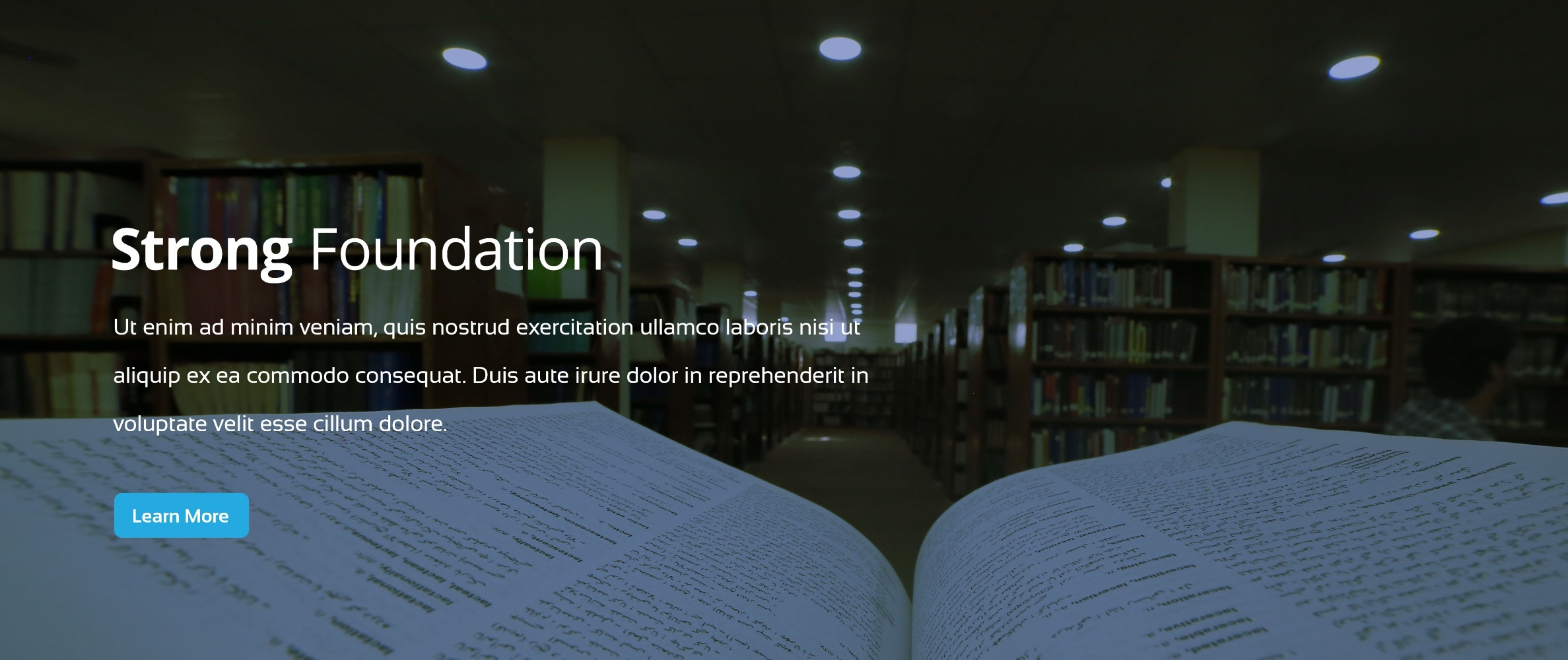 Pide-library-banner